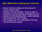 why white box testing isn t covered
