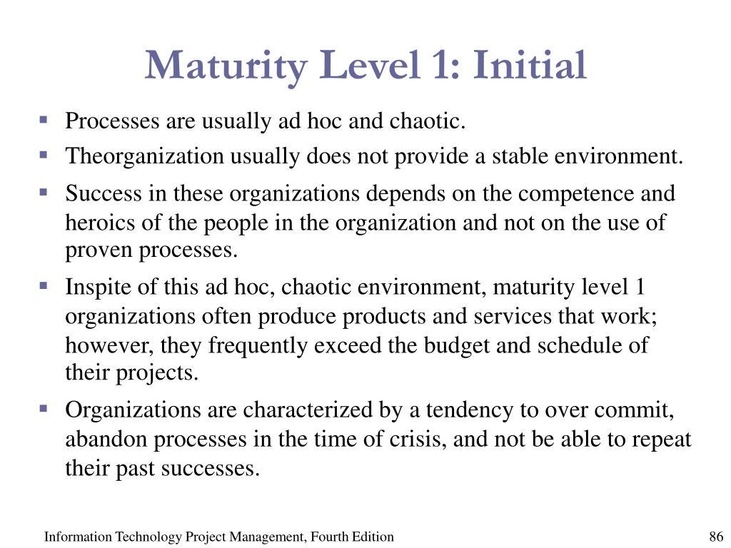 Maturity Level 1: Initial