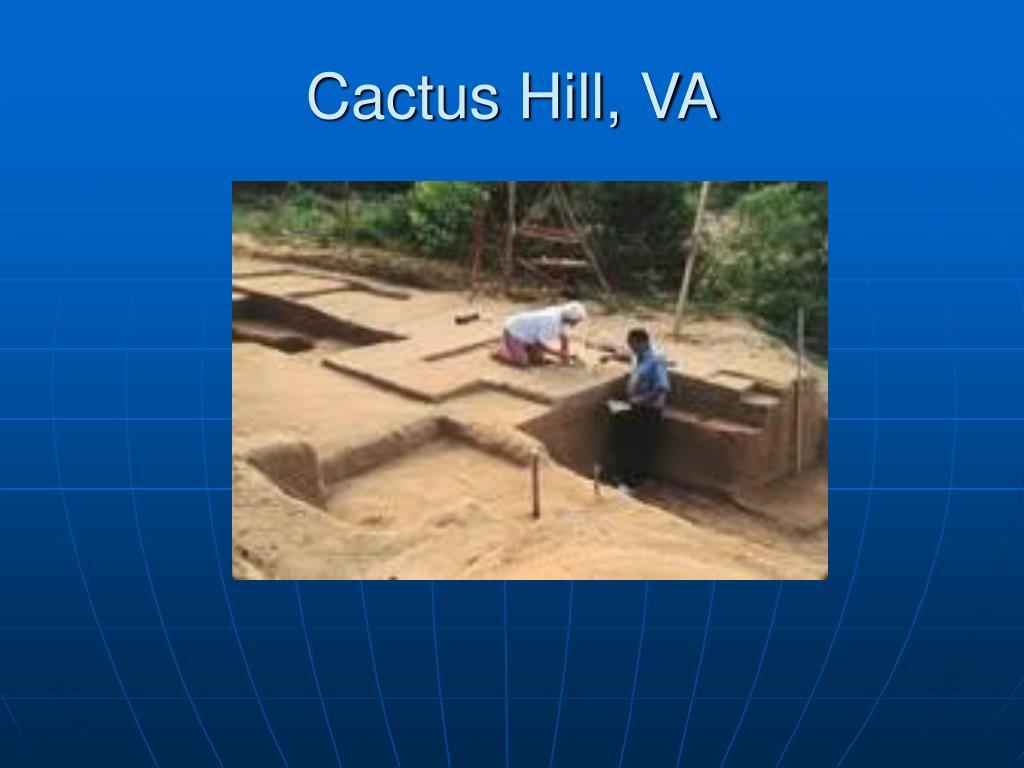 Cactus Hill, VA