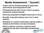 needs assessment tsunami