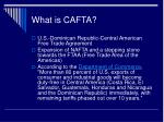 what is cafta
