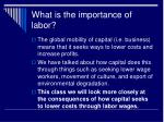 what is the importance of labor