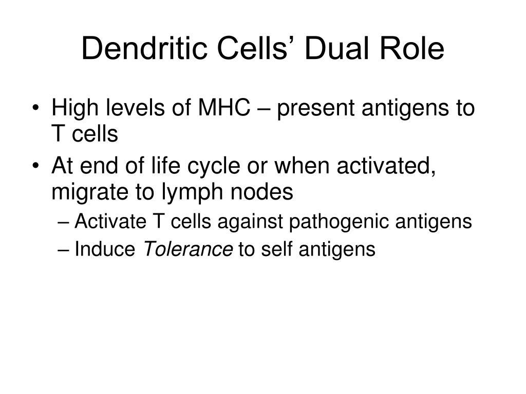 Dendritic Cells' Dual Role