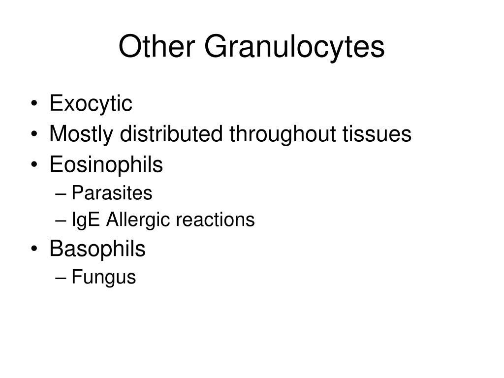 Other Granulocytes