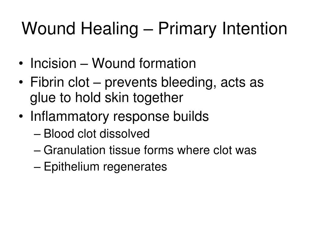 Wound Healing – Primary Intention