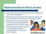 multiculturalism ethnic studies