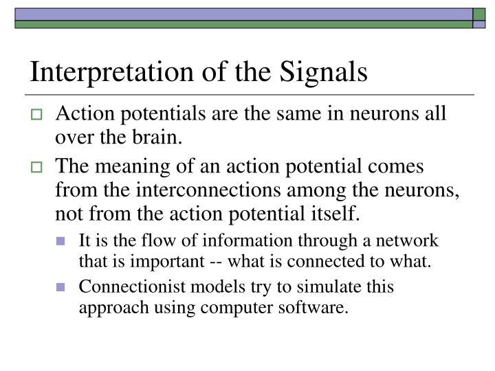 Interpretation of the Signals