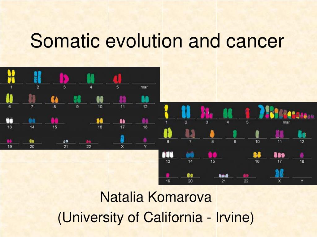 somatic evolution and cancer l.