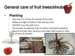 general care of fruit trees shrubs