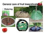 general care of fruit trees shrubs40