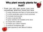 why plant woody plants for fruit