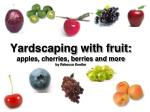 yardscaping with fruit apples cherries berries and more by rebecca koetter