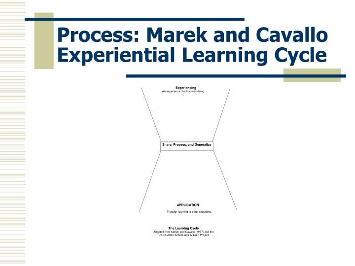 Process: Marek and Cavallo