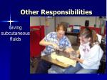 other responsibilities27