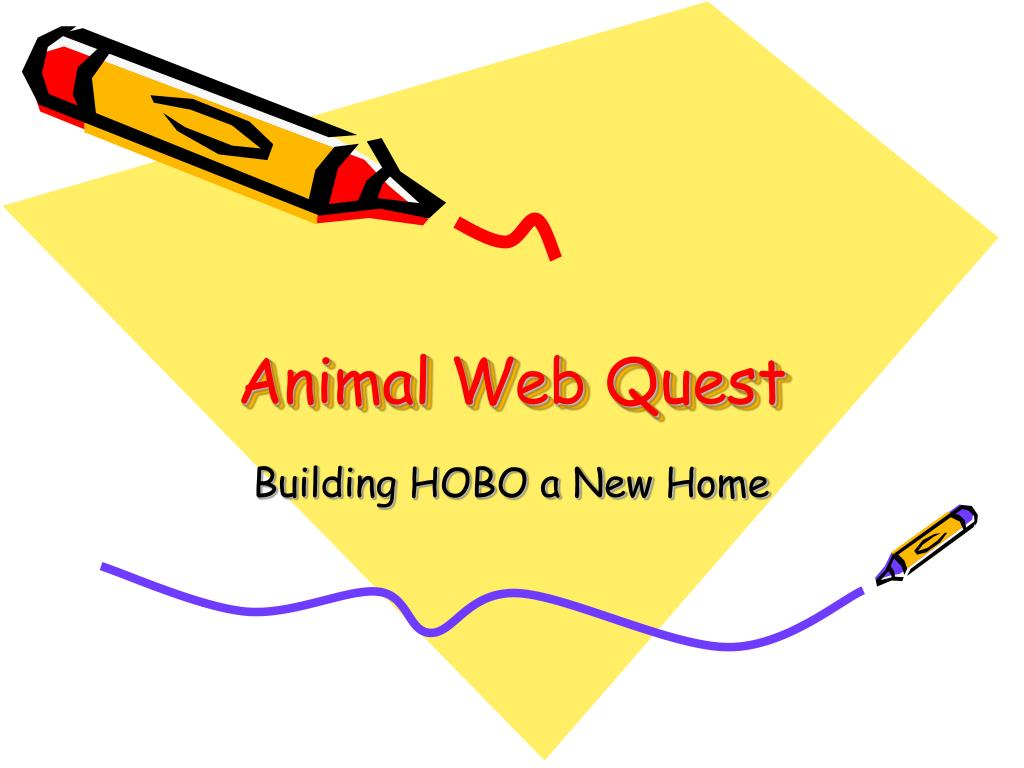 animal web quest l.