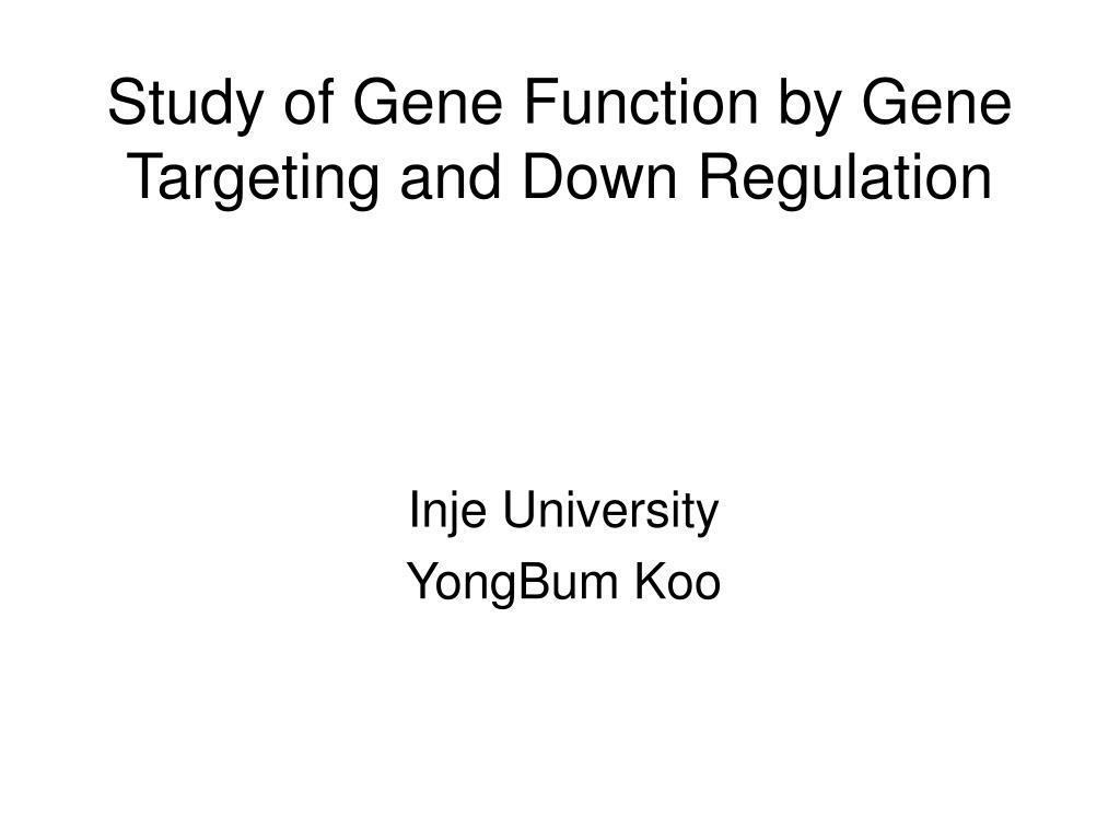 Study of Gene Function by Gene Targeting and Down Regulation
