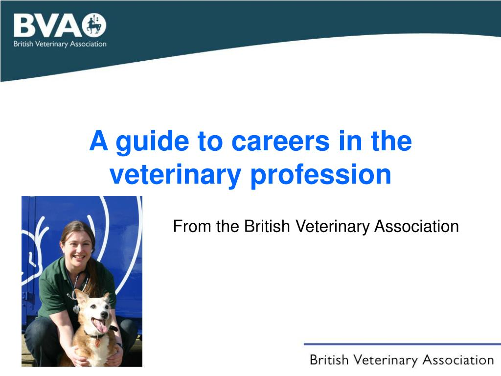 a guide to careers in the veterinary profession l.