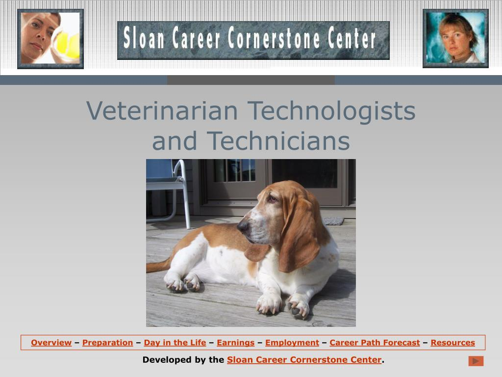 veterinarian technologists and technicians l.