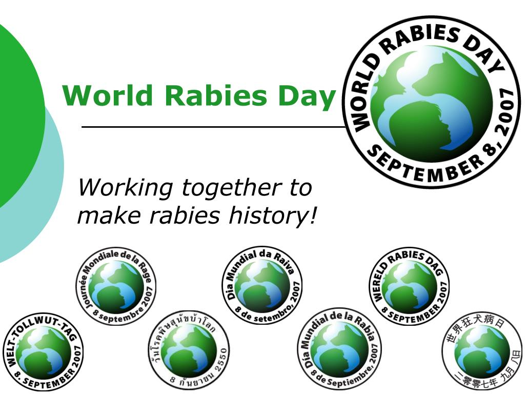 world rabies day l.