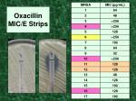 oxacillin mic e strips