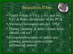 animals in films
