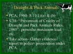 draught pack animals