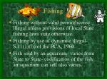 fishing38