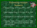 performing animals instances