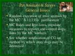 pet animals strays general issues32