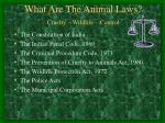 what are the animal laws cruelty wildlife control