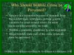 why should wildlife crime be prevented