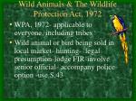 wild animals the wildlife protection act 1972