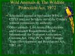 wild animals the wildlife protection act 197234