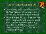 zoos what can you do