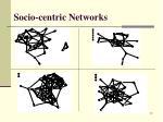 socio centric networks