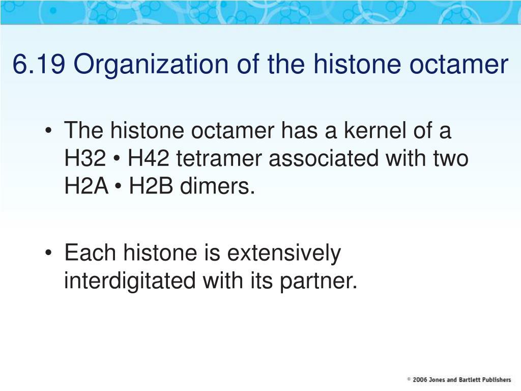 6.19 Organization of the histone octamer