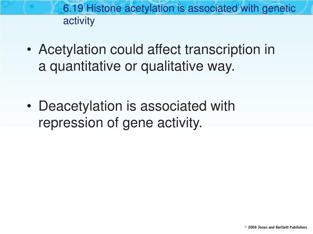 6.19 Histone acetylation is associated with genetic activity