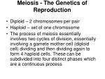 meiosis the genetics of reproduction