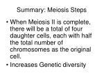 summary meiosis steps20
