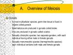 a overview of meiosis5