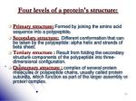four levels of a protein s structure