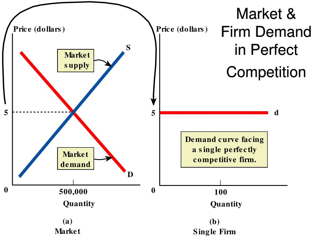 Market & Firm Demand in Perfect Competition