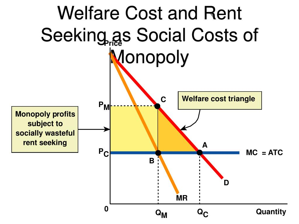 Welfare Cost and Rent Seeking as Social Costs of Monopoly