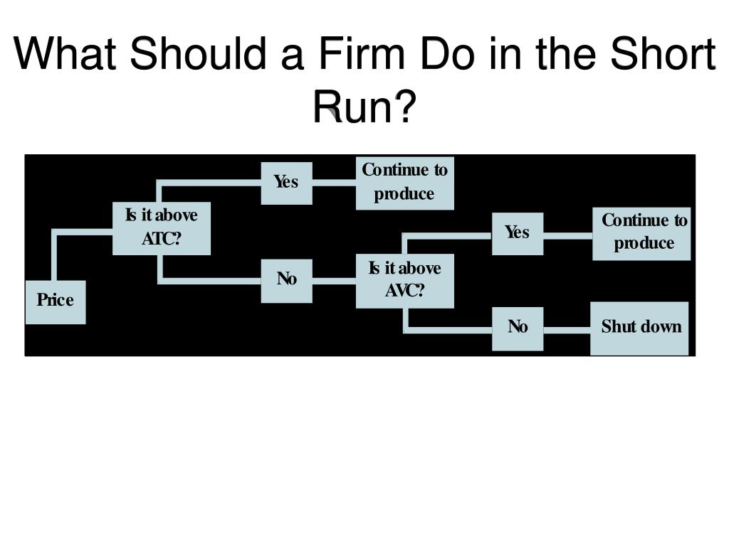 What Should a Firm Do in the Short Run?