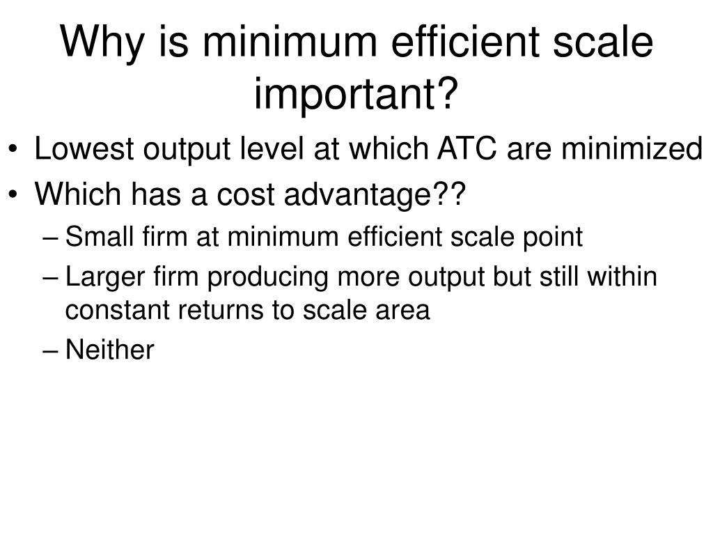 Why is minimum efficient scale important?