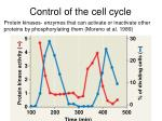 control of the cell cycle23