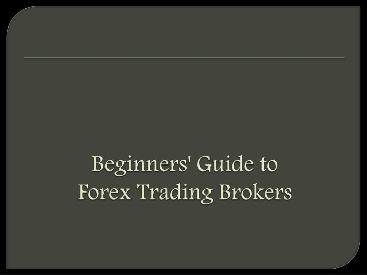 Traders guide to forex