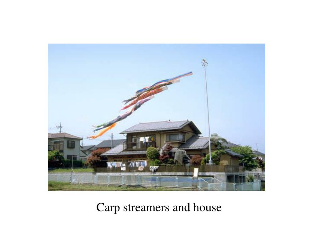 Carp streamers and house