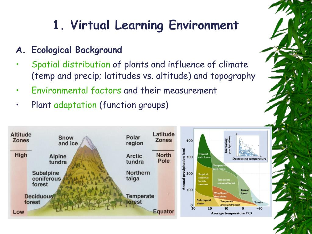 1. Virtual Learning Environment