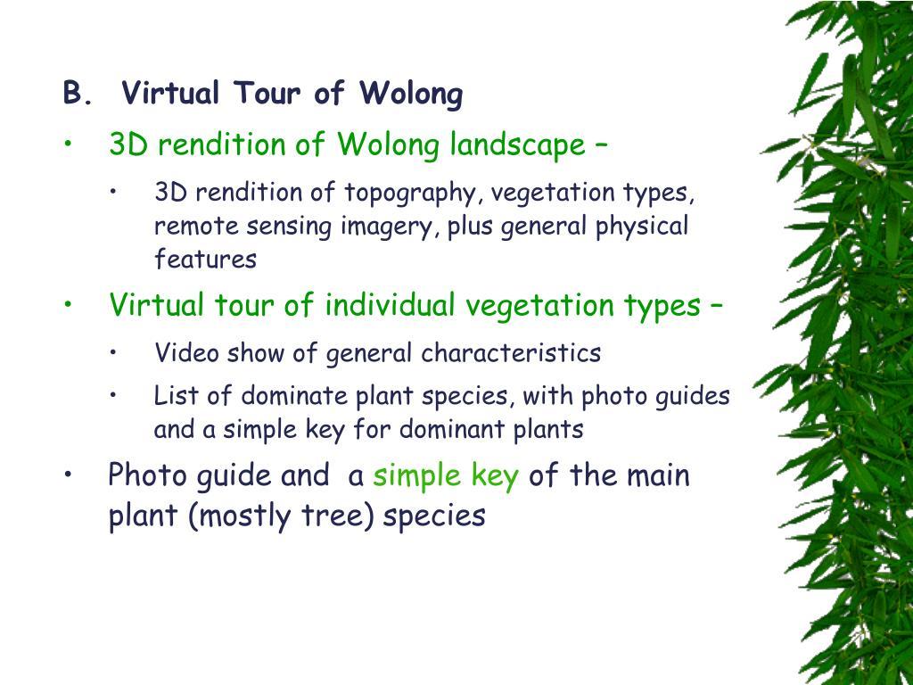 B.  Virtual Tour of Wolong
